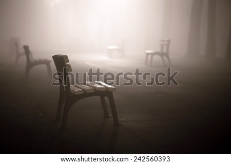 Foggy park alley with benches on night - stock photo