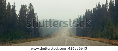 Foggy road in forest in Banff National Park - stock photo