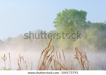 Foggy spring landscape at sunrise of Jackson Hole Lake, Fort Custer State Park, Michigan, USA - stock photo