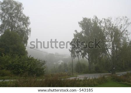 Foggy weather - stock photo