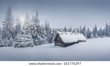 Foggy winter landscape in the forest. Retro stile - stock photo
