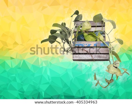 Foliage plant in wood flower pot with yellow and green background  - stock photo