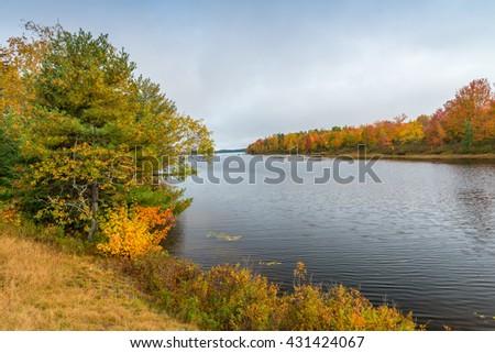 Foliage vegetation over a lake in autumn. - stock photo