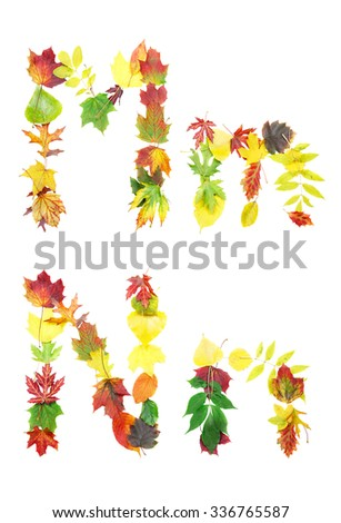 Font made of autumn leaves isolated on white. Letters m and n. - stock photo