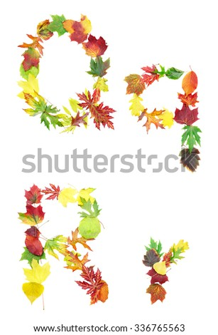 Font made of autumn leaves isolated on white. Letters q and r. - stock photo