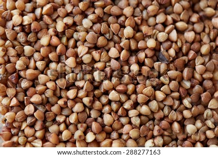 food, agriculture, cereals and healthy eating concept - whole buckwheat grain - stock photo