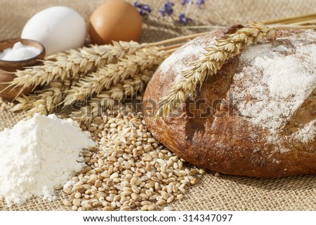Food. An ear of wheat. background blur.sheaf of wheat. bunch. cloth burlap. bread and salt  and eggs and flour.   - stock photo