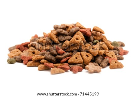 food for cats - stock photo