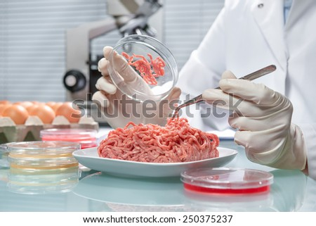 Food quality control expert inspecting at meat specimen in the laboratory - stock photo