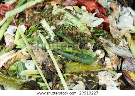 Food waste for the compost - stock photo