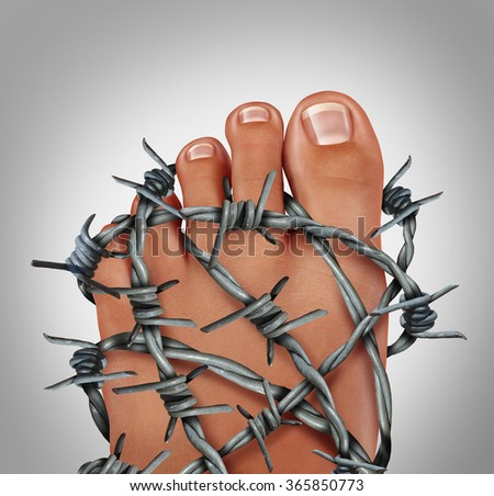 Foot pain podiatry medical concept as a symbol for painful inflammation or toe injury as a group of sharp barb wire wrapped around the human feet anatomy. - stock photo