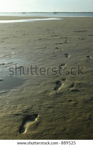 Foot prints in the sand on Cape Cod beach - stock photo