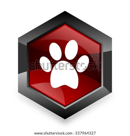 foot red hexagon 3d modern design icon on white background  - stock photo