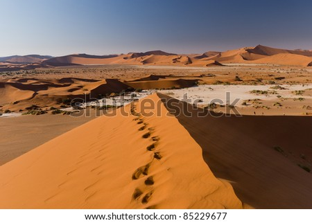 Foot tracks on top of a dune at Sossusvlei in Namibia - stock photo