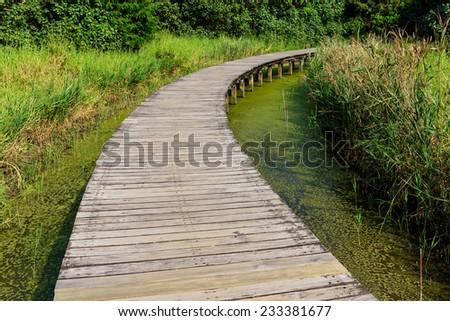 Footbridge through wetland - stock photo