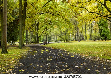 footpath in autumn park - stock photo