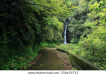 Footpath leading to a mysterious waterfall in forest  - stock photo