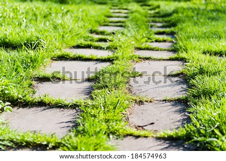 footpath on th green grass in the park  - stock photo