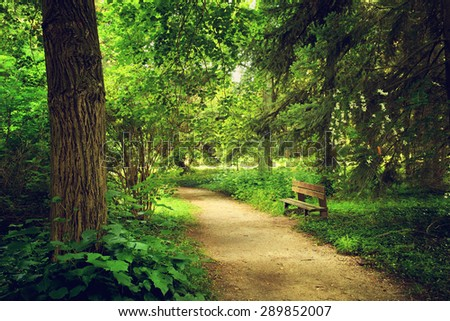 Footpath on the park - stock photo