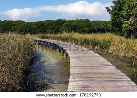 Footpath over a small lake in Wetland park in Hong Kong - stock photo