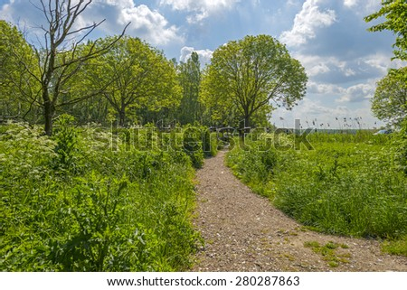 Footpath over a wooden bridge in spring - stock photo