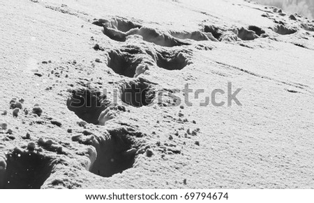 footprint in snow - stock photo