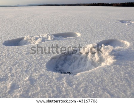 footprint in the snow - stock photo