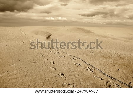 footprint over the sand with amazing sky - stock photo