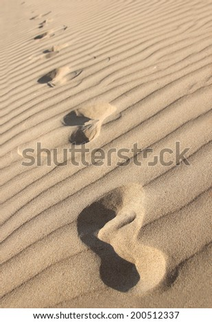 Footprints in the dry rippling sand. Shallow depth of field - stock photo