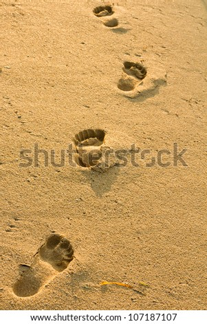 footprints in the sand beach - stock photo