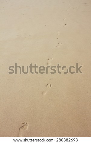 Footprints in the sand in a beach - stock photo