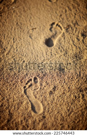 Footprints in the sand on the beach evening - stock photo