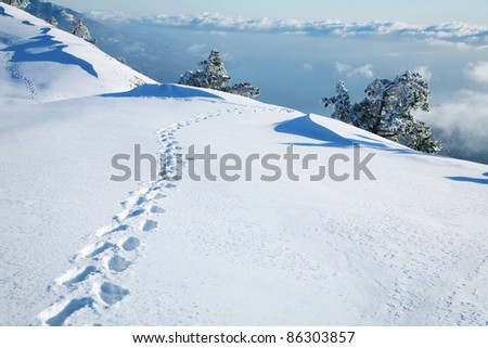 Footprints in the snow, reaching to the horizon above the clouds. - stock photo