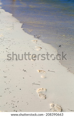 footprints in the tropical beach sand  - stock photo