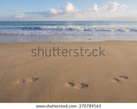 footprints on a deserted beach,ile de re,france,fall 2014 - stock photo