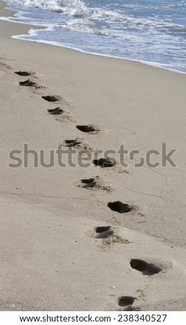 footprints on a sandy beach at the edge of the sea. Tuscany, Italy. - stock photo