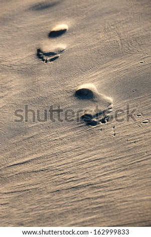 footprints on a sandy beach in the summer - stock photo