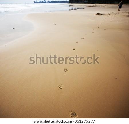 Footprints on beach - stock photo