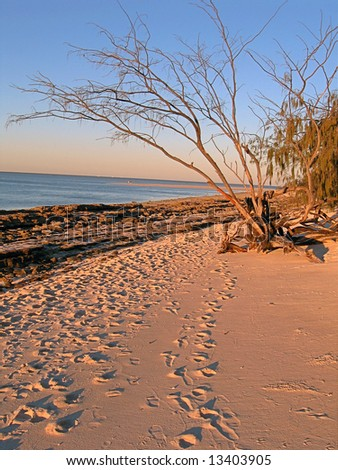 Footprints on coral island - stock photo