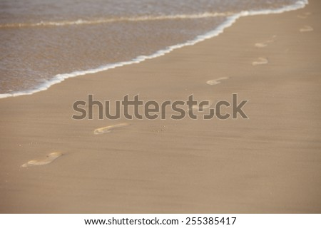 Footprints on the sandy seashore - stock photo