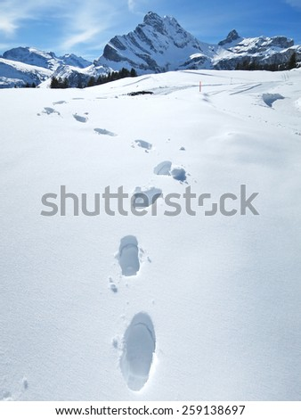 Footprints on the snow - stock photo