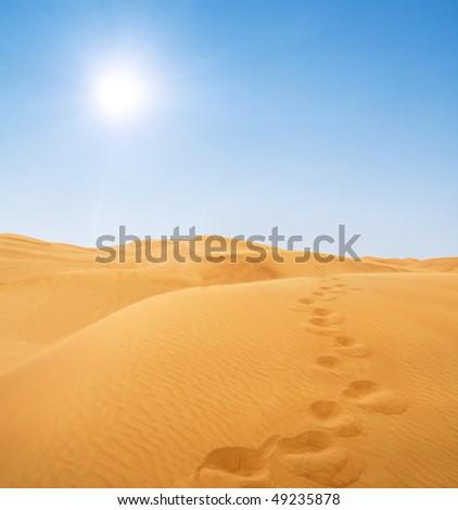 footsteps in desert - stock photo