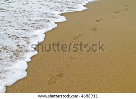 Footsteps on beach shoreline - stock photo