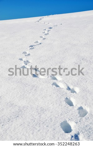 Footsteps on the snow - stock photo