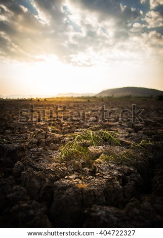 For new days. - stock photo