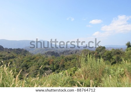 Forest and Bushes in Lao PDR - stock photo