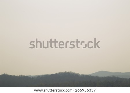 Forest and polution - stock photo
