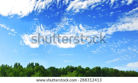 Forest and Sky Landscape. well using as Backgrounds. - stock photo