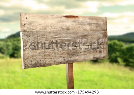 forest and wooden sign  - stock photo