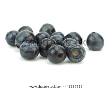 Forest blueberries on a white background - stock photo